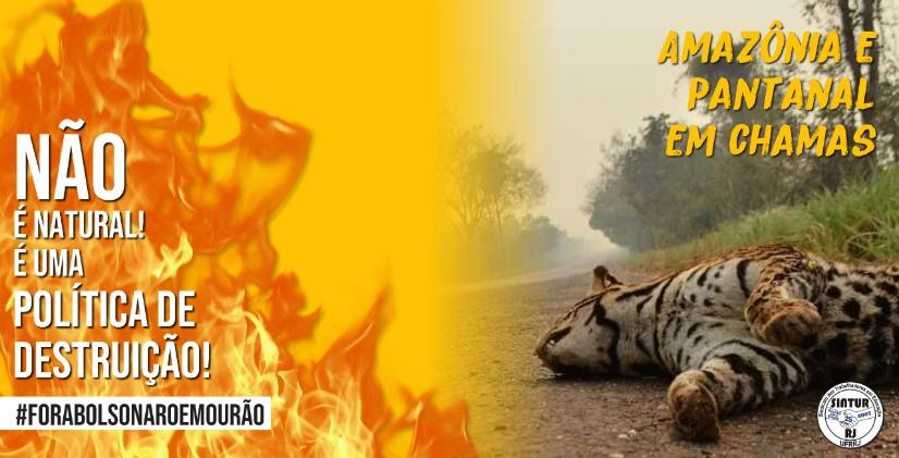 BRASIL EM CHAMAS: DO PANTANAL À AMAZÔNIA, A DESTRUIÇÃO NÃO RESPEITA FRONTEIRAS.